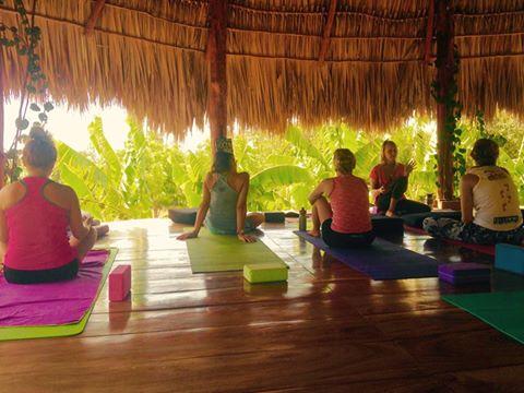nikki yoga start